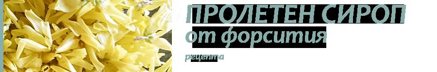 сироп от форсития